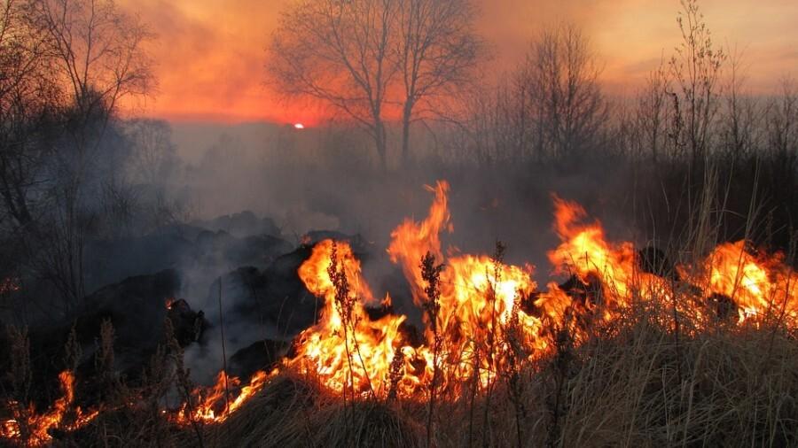 Ordinanza prescrizioni antincendio 2021, pulizia orti, giardini, fasce di rispetto, terreni agricoli