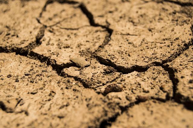 Riconoscimento stato di calamità naturale