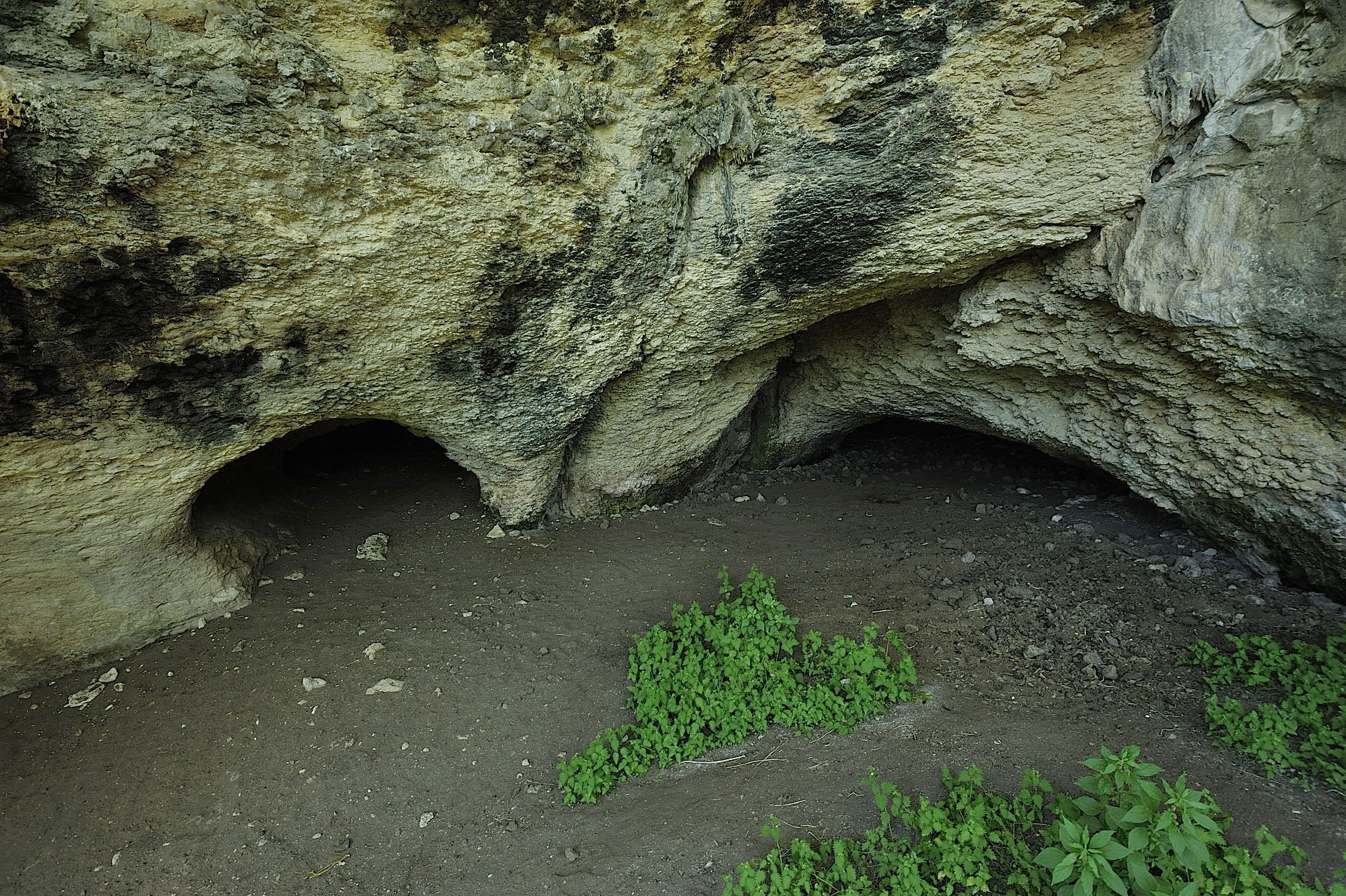 Grotta Filiestru